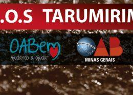 tarumirim_site